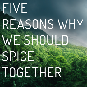 Five reasons why we should spice together