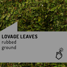 lovel_leaves