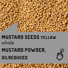 mustard_seeds_yellow