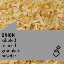 onion_en1