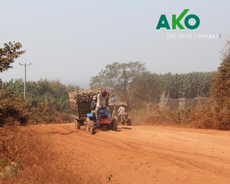 AKO-the_spice-company-rote_strase_Kambodschia